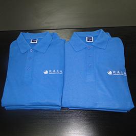ए 3 टी-शर्ट मुद्रक WER-E2000T द्वारा पोलो शर्ट अनुकूलित मुद्रण नमूना